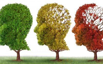 Deterioro cognitivo y demencias